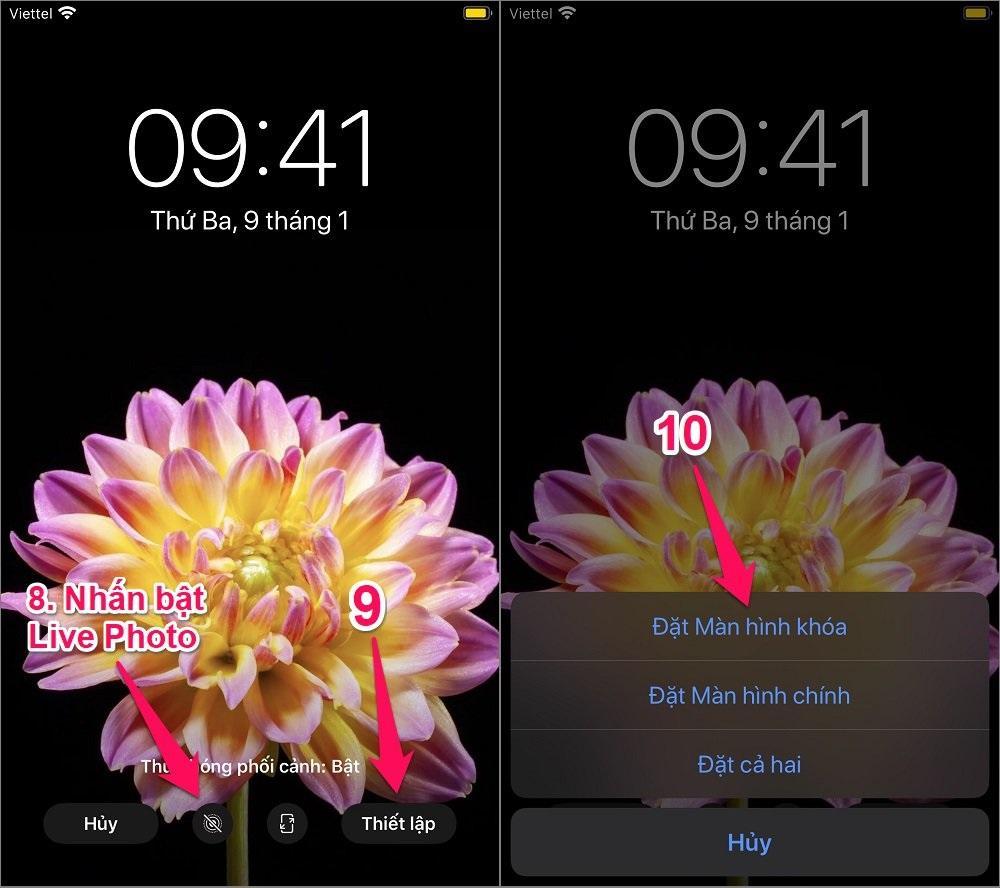 Cách tạo hình nền động cho điện thoại iPhone
