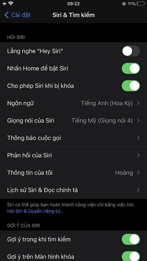 Hướng dẫn cách thiết lập Siri trên iPhone/iPad