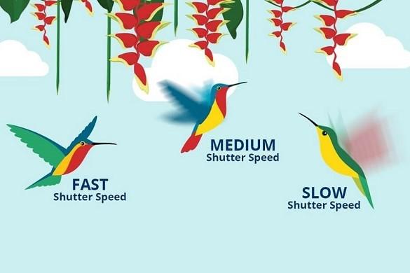 Tốc độ màn trập (Shutter speed) là gì?